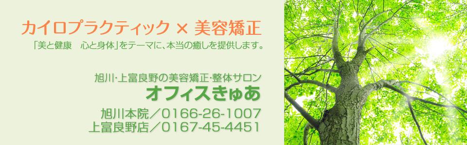 スタッフ写真 - カイロプラクティック×美容矯正なら旭川・上富良野の整体サロン「オフィスきゅあ」